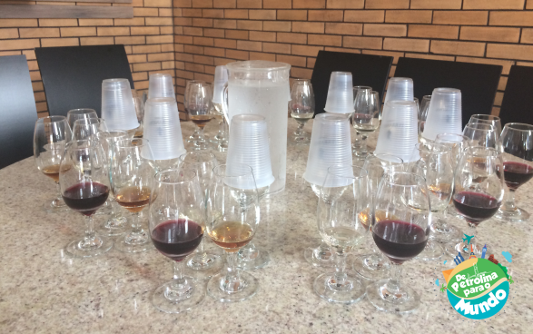 Passeio Vapor do Vinho – Parte 1:  Vinícola Miolo
